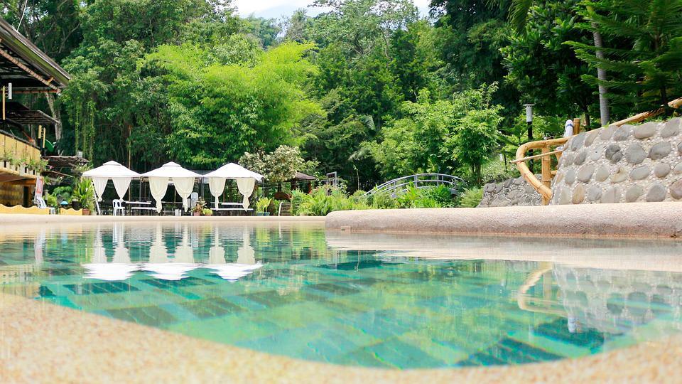 piscine biologique